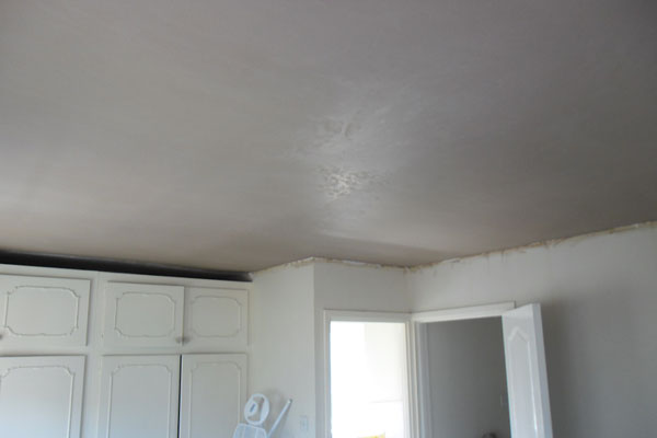Plaster Ceilings