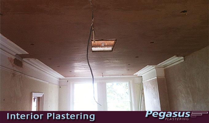 Plastering Celings N10