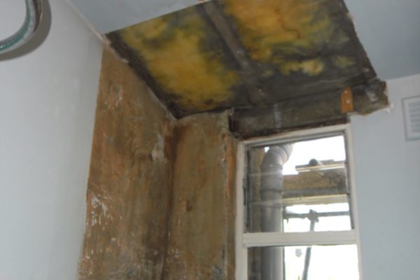 Wall and ceiling plaster repairs