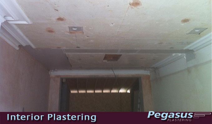 Plasterer N10